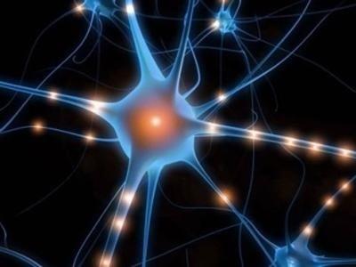 Rieducazione neuromotoria