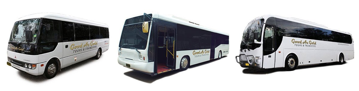 School bus hire and coach charter Sydney