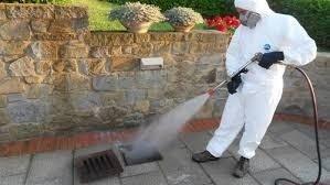Pest control ambiente domestico