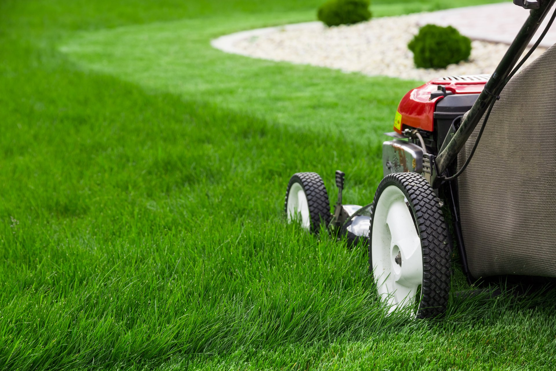 Lawn Care Services in Clarence, NY Turftenders