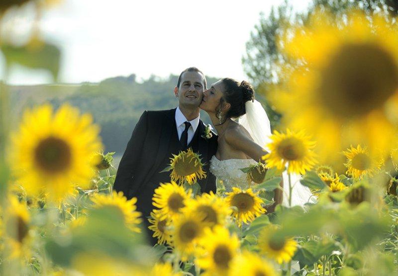 Sposa bacia uno sposo in un campo di girasoli