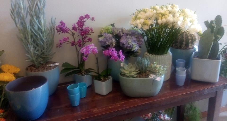 vasi di composizioni floreali