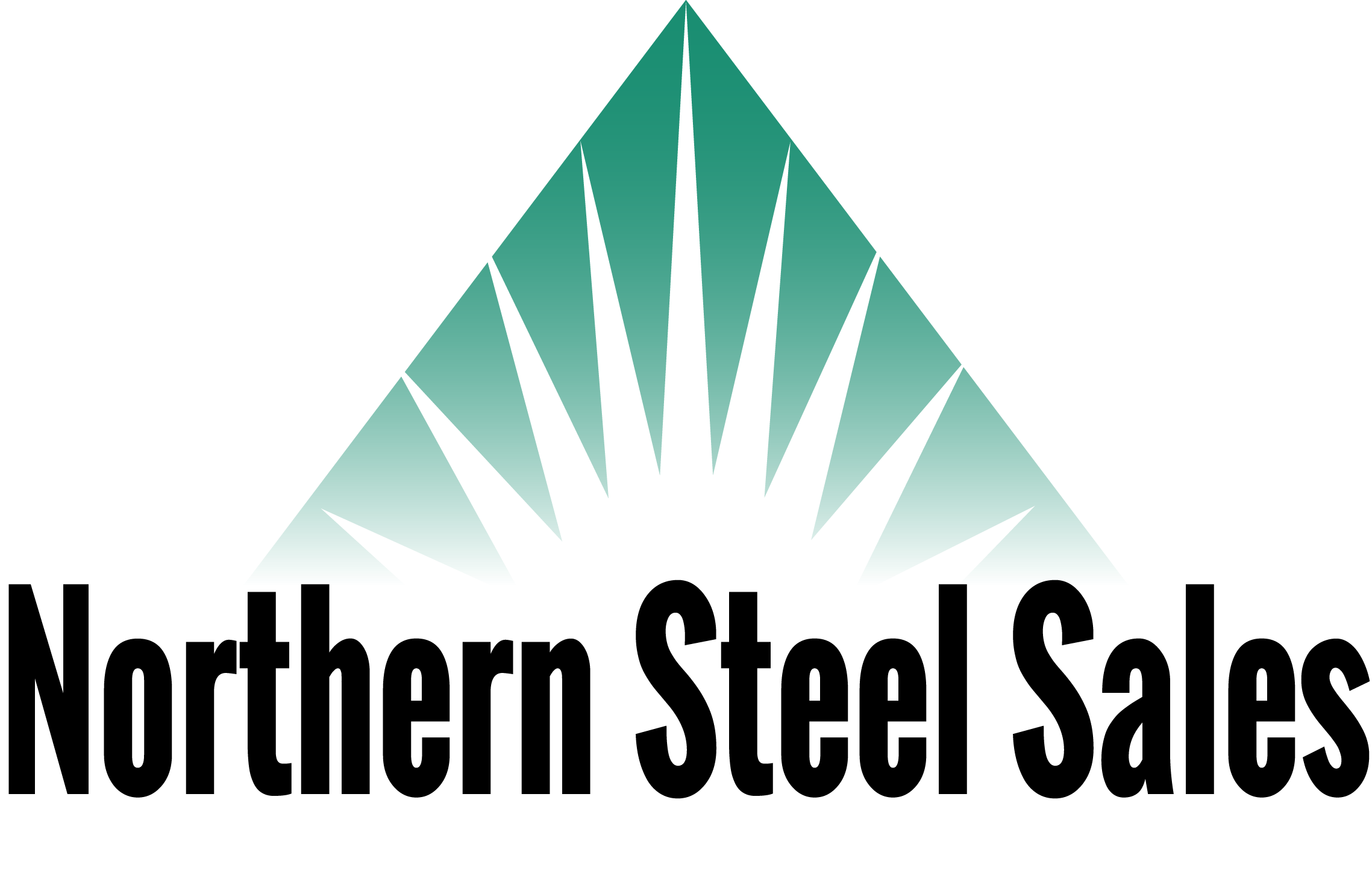 northern steel sales logo