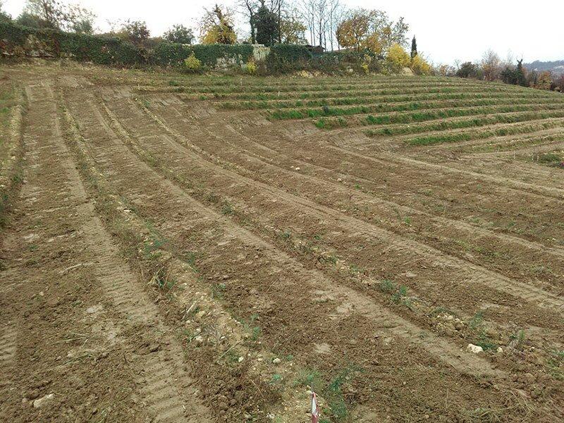 Livellamenti di terreni agricoli