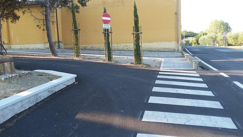 una strada con vista delle strisce pedonali e uno spartitraffico con degli alberi