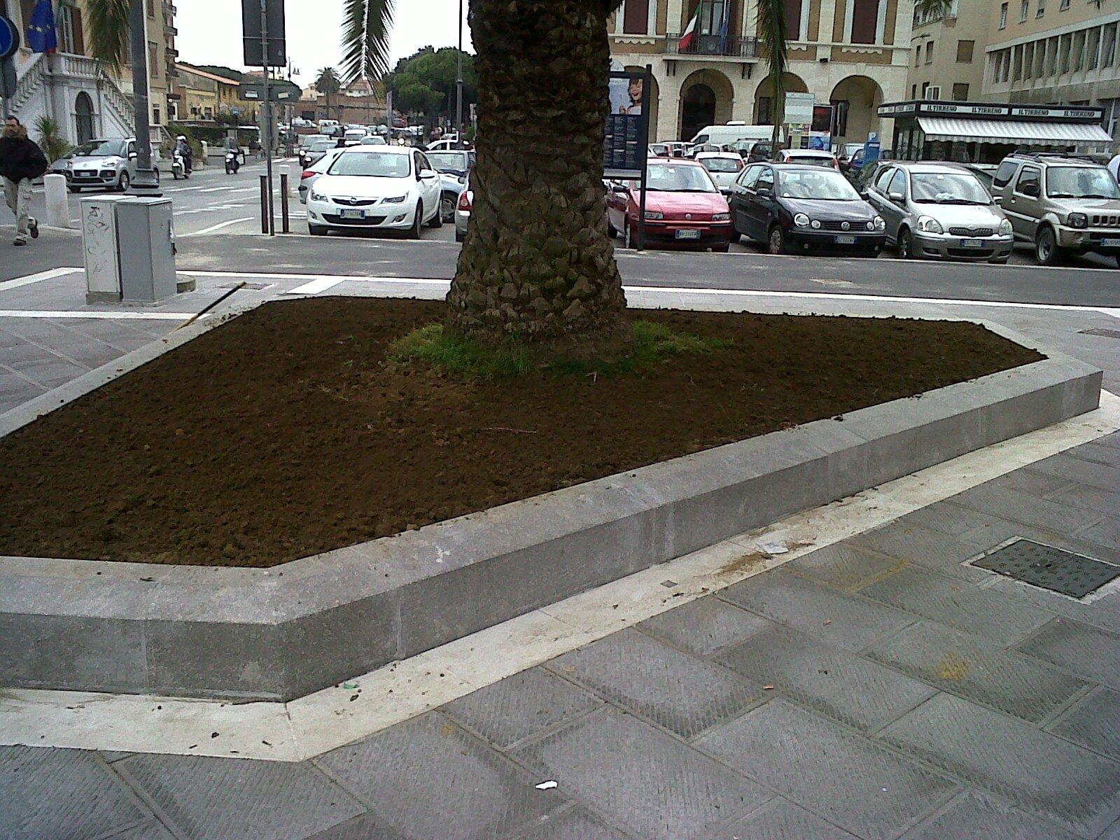 un'aiuola su un marciapiede con un albero e più avanti un parcheggio con delle macchine