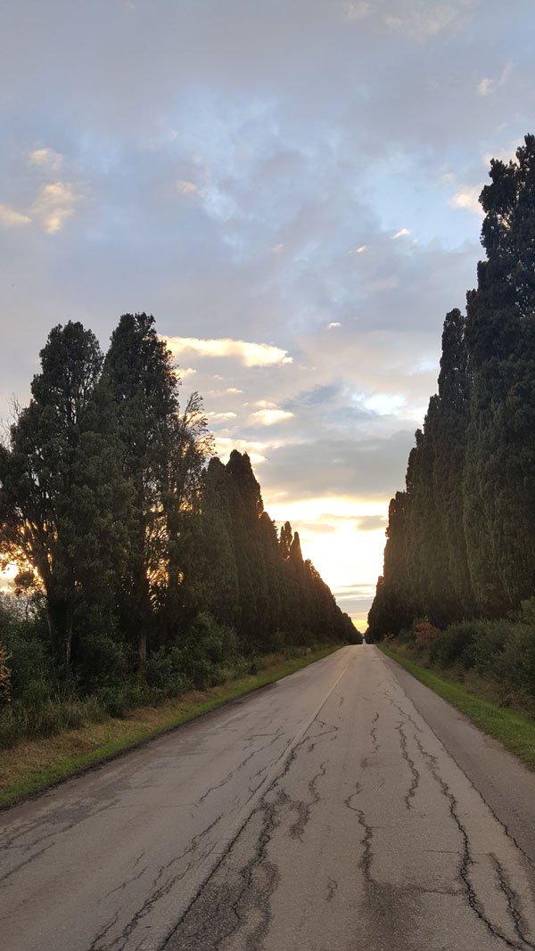 Un sentiero con cipressi