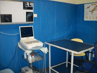 Cilinica veterinaria Oristano