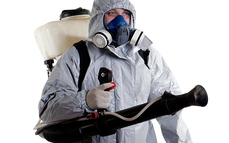 Specialists Pest and Weed Control Services in Clare