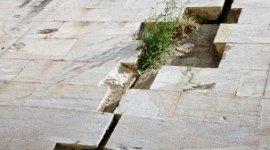 riparazioni impianti elettrici, riparazioni parti in muratura, cura aree verdi comuni