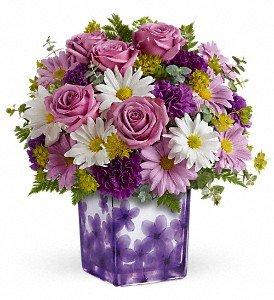 Teleflora's Dancing Violets Bouquet Premium