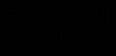 logo ingegneria cerati