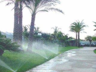 giardino con irrigatori