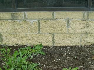 brick restoration Jamestown, NY