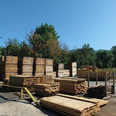 Venditti Impresa boschiva Sezze di Latina