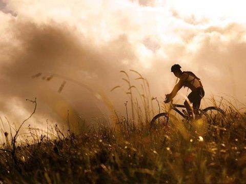 bici codogno