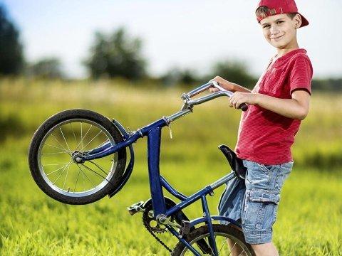 servizi ciclisti codogno