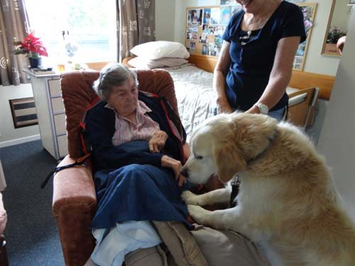 Old individuals enjoying time with their animal