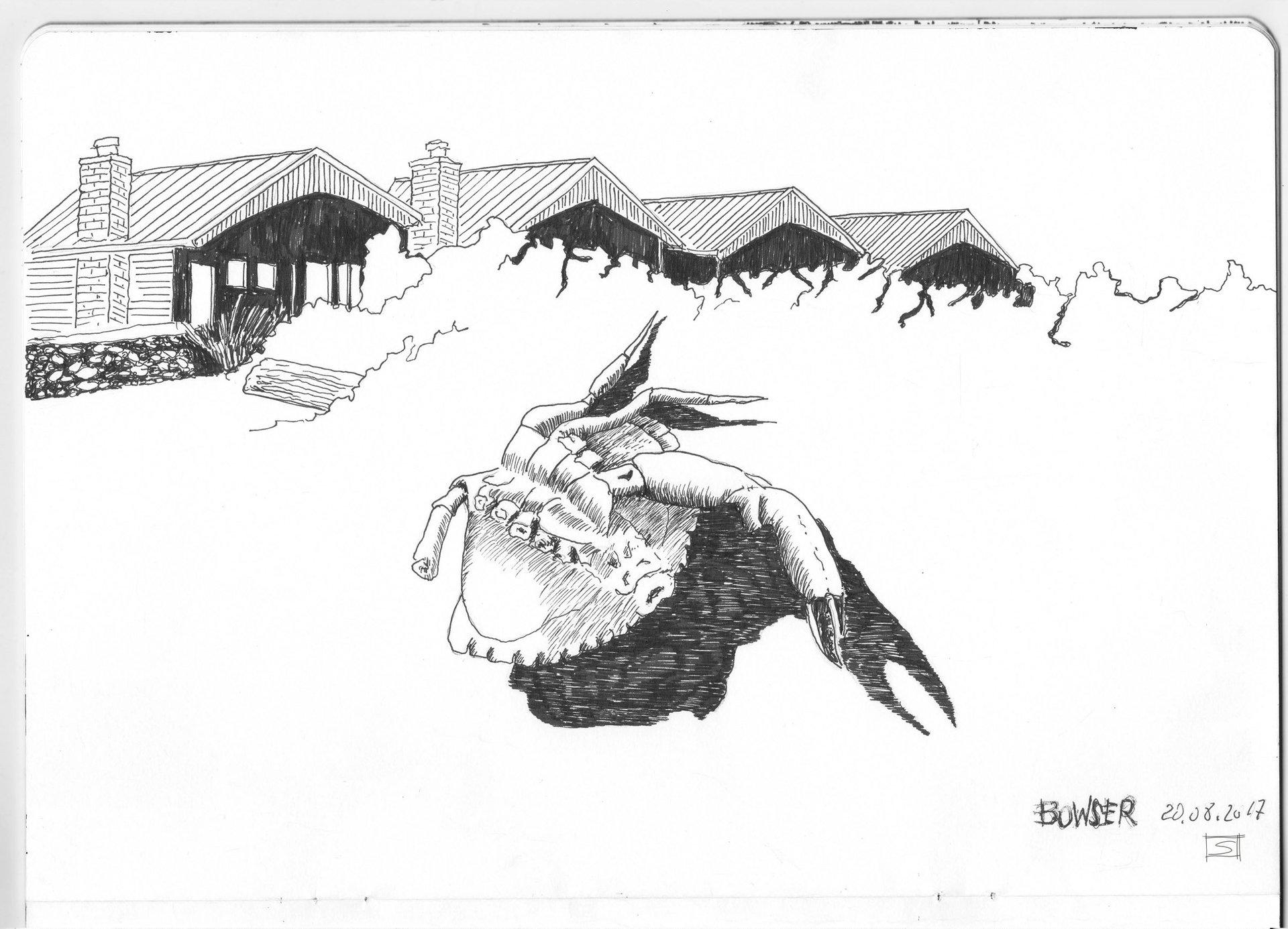 Sebastiano Toma sketches of Canada - Bowser