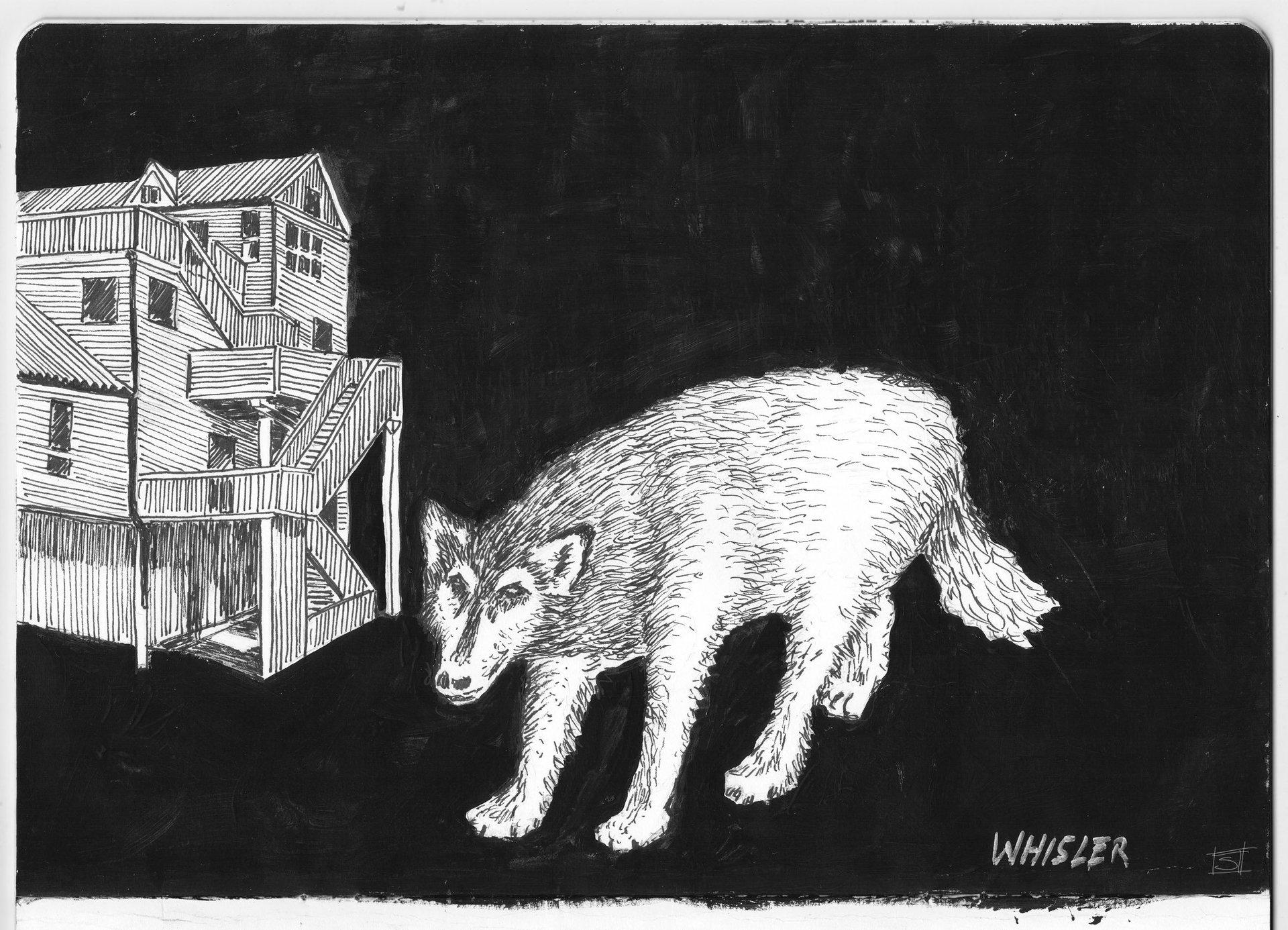 Sebastiano Toma sketches of Canada - Whistler