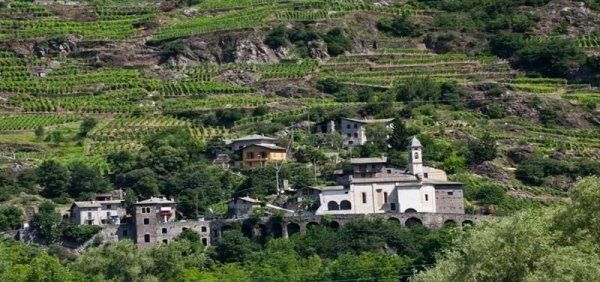 A tavola con le erbe aromatiche e i vini di Mamete Prevostini