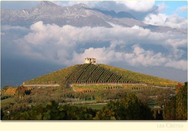 Lescretes Vineyards