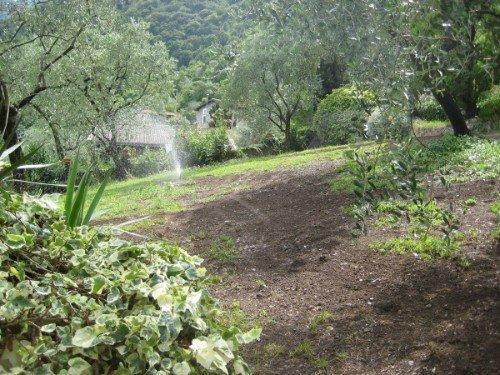 Sistema di irrigazione di un parco pubblico