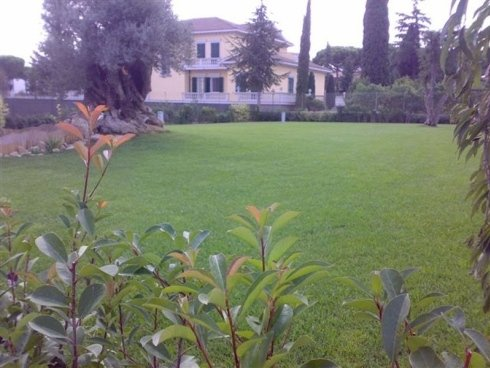 Vista di un bellissimo giardino cui erba questa molto bene accurata