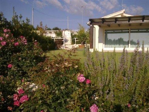 Vista di un angolo del giardino dove crescono le rose