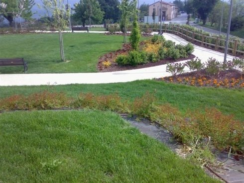 Bel parco pubblico con vari tipi di alberi, banche per sedersi e l'erba cresce naturale