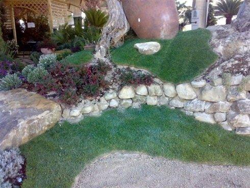 Il dislivello del jardin si è salvata con la costruzione di un piccolo muro di pietra, Prato intorno alle grandi radici degli alberi e piccoli gruppi di piante