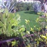 Progettazione giardini privati Ancona