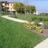 Progettazione e manutenzione giardini pubblici