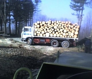legna da costruzione
