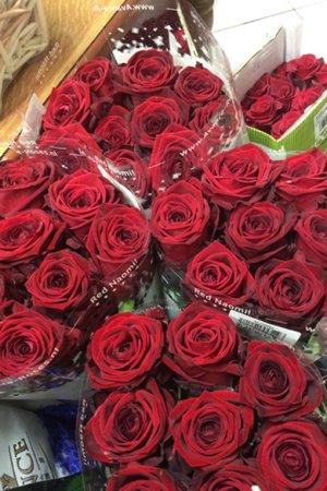 Delle rose rosse