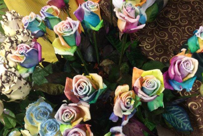 delle rose multicolore