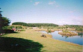 Poultry breeders - Llanon, Ceredigion - Pentwyn Poultry - Landscape