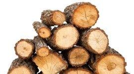 commercio legna, legna da ardere, taglio legna