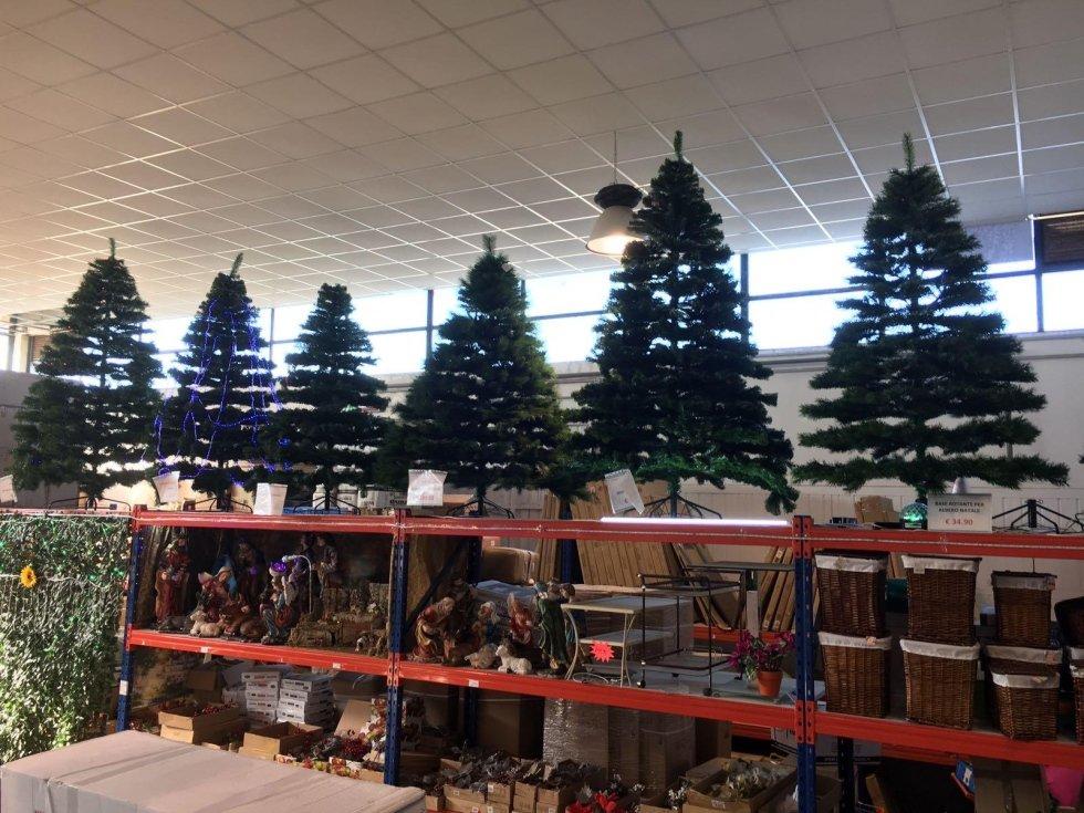 Reparto alberi di Natale