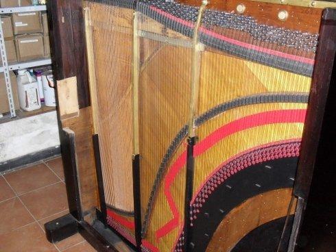 sostituzione corde strumenti musicali