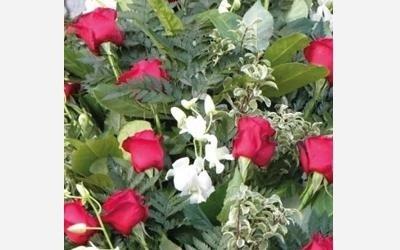 composizioni floreali ovada