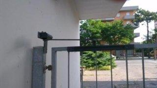 Molla e serratura per cancello pedonale in ferro