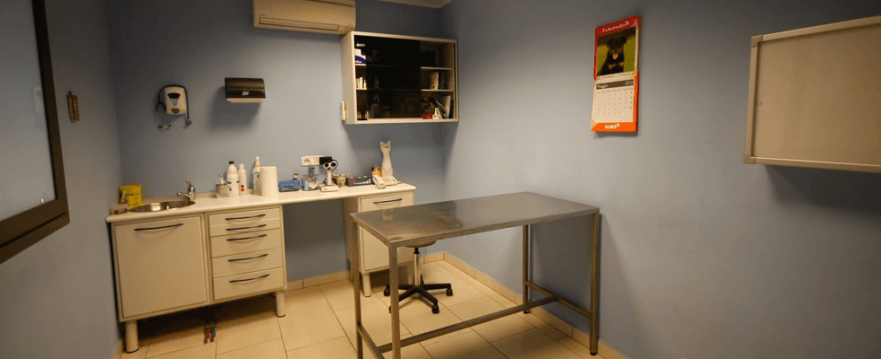 Clinica Veterinaria Grosseto Nord