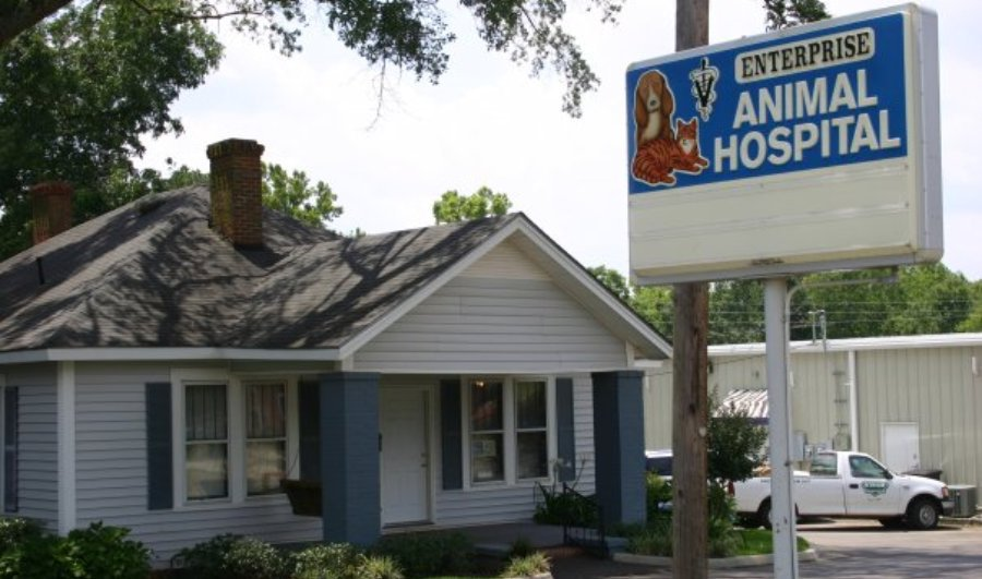veterinary hospital in Enterprise, AL