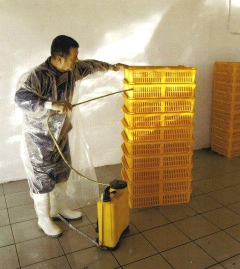 sterilizzazione di materiali d'allevamento per quaglie