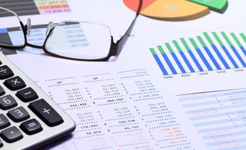 Financial reports of a company prepared by the professionals