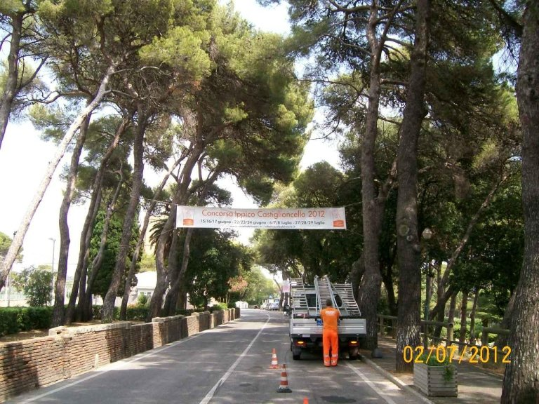 non strada alberata con un manifesto con scritto concorso ippico Castiglioncello 2012