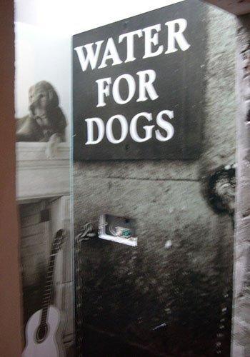 un cartello con scritto Water For Dogs