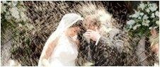 servizio fotografico, cerimonie, matrimonio