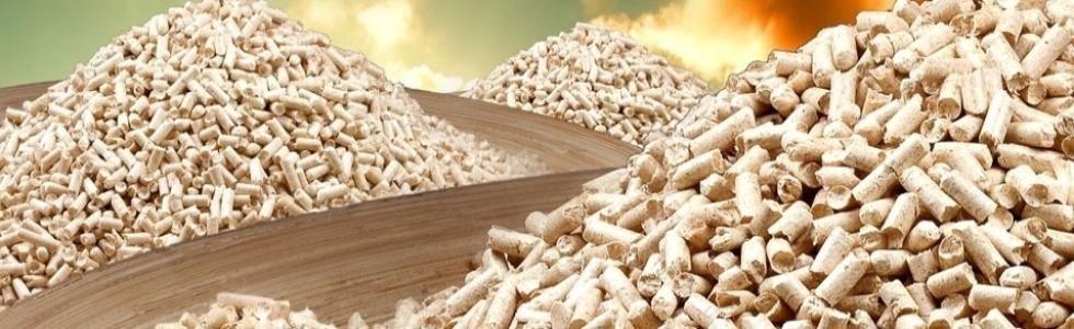Ecoerre produzione e vendita pellet
